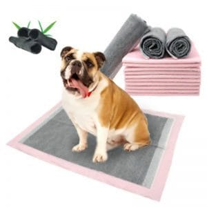 disposable pads for dogs